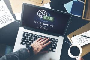 E-Commerce Marketing Strategy - Hollister CA - Littlejohn's Web Shop