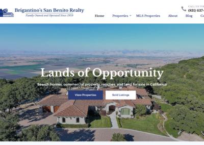 Real Estate Custom Website Design